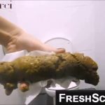 Sexy Girl Shits Massive Log In Public Bathroom And Picks It Up To Show Us